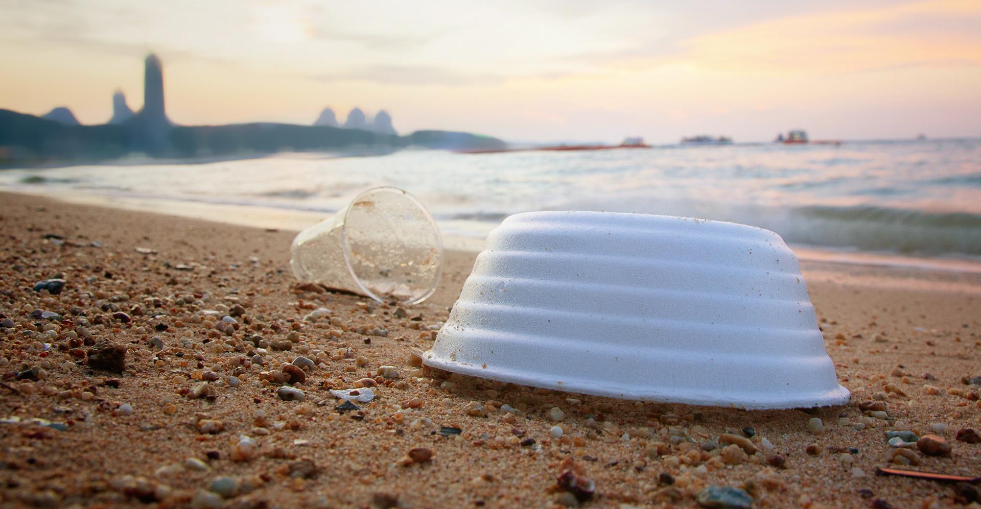 Baltimore Bans Styrofoam While Annapolis Says No
