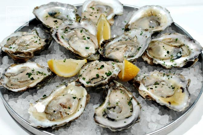 Oyster quiz what are they hiding rescuing wildlife for Food bar somerset mb
